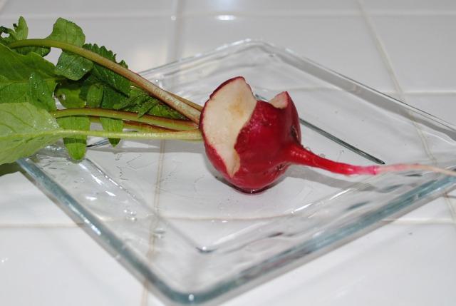 Sharing radishes