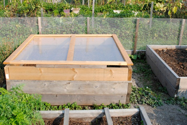 Square Foot Cold Frame